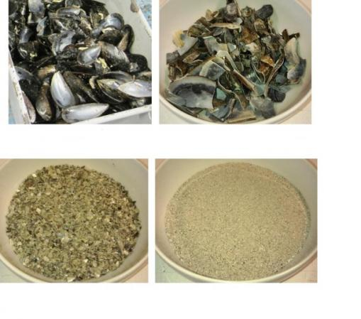 crushed oyster shells price difference